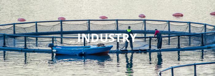 Ultralon Foam Group | PE and EVA Foam Manufacturers